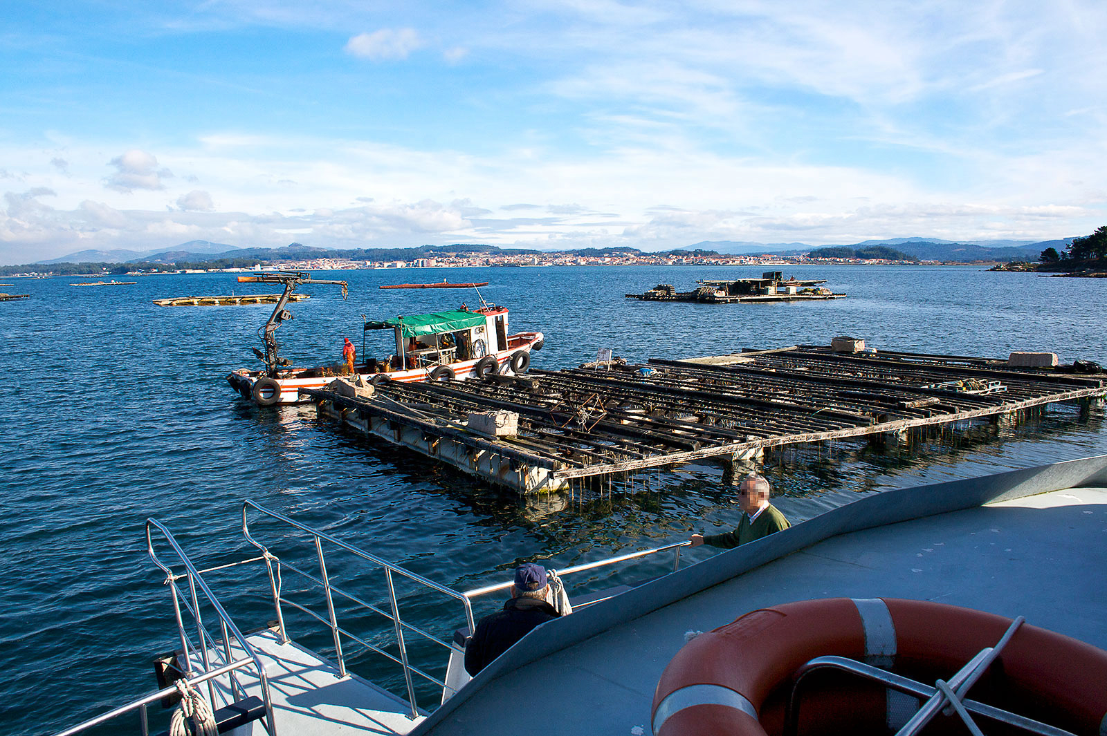 Vista de una bateas con un barco realizando la extracción de mejillones